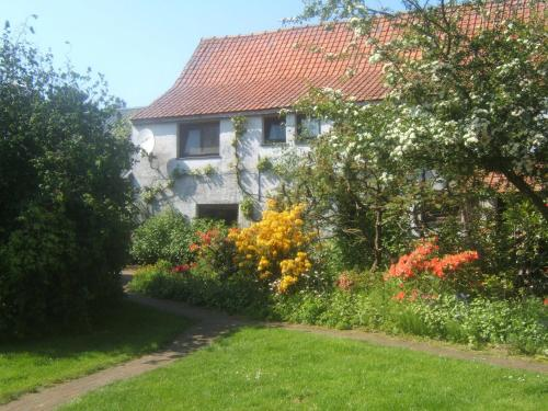 B&B Wilgenhof