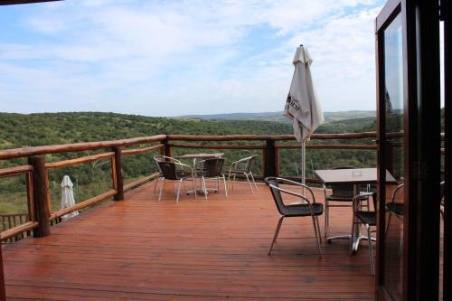 Inkwenkwezi Private Game Reserve Photo
