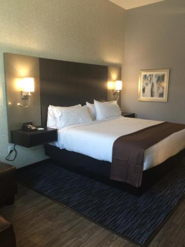 Holiday Inn Carlsbad/San Diego Photo