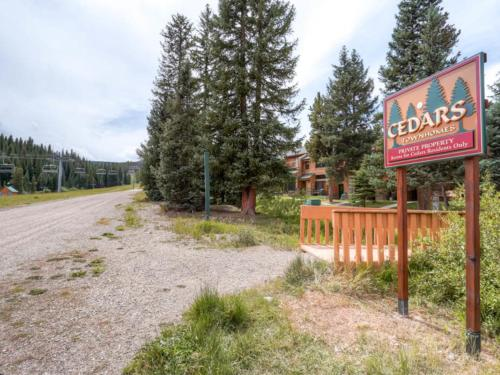 Cedars #25 - Breckenridge, CO 80424