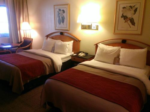 Comfort Inn at Ponderosa Pines Photo