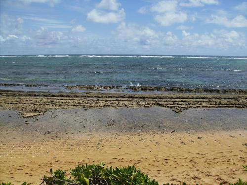 Kauai Kailani #A-307 Photo