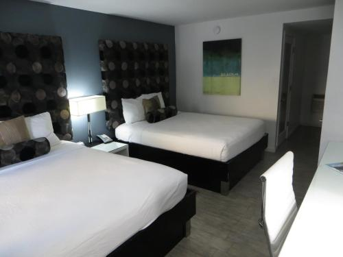 Lotus Boutique Inn and Suites Photo