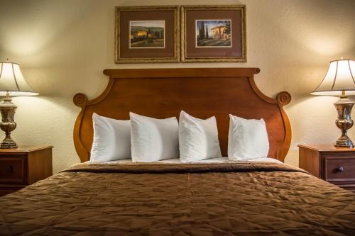 Rodeway Inn & Suites Tampa Photo