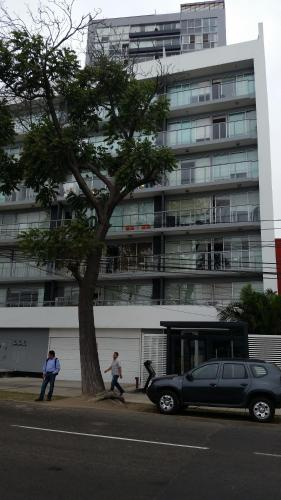 Premium Apartments Miraflores Photo