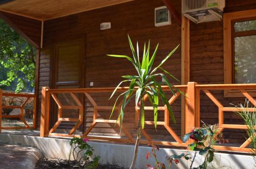 Cıralı Cirali Simge Holiday Home address