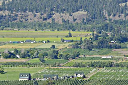 Crowsnest Vineyards Guest House Photo