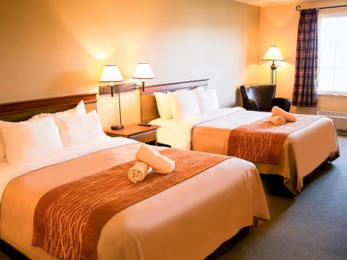 Comfort Inn & Suites Mont-Tremblant Photo