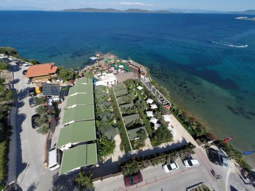 Mordogan Seal Beach Club tatil