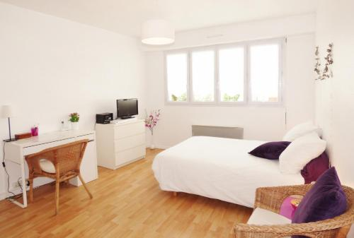 Studio Place Dupuy - toulouse - booking - hébergement