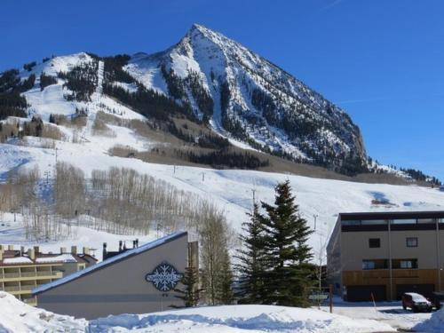 Picture of Snowcrest by Crested Butte Lodging
