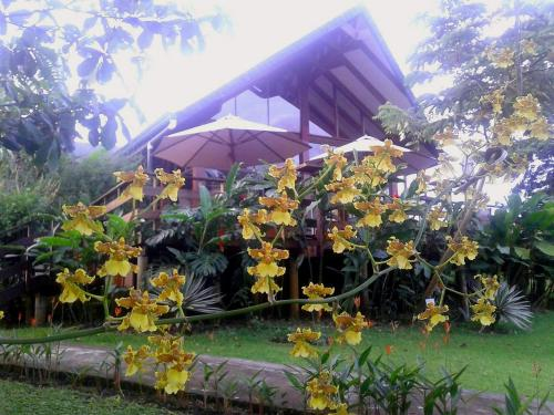 Tenorio Lodge Photo