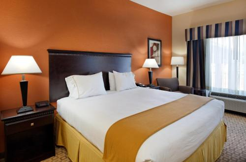 Holiday Inn Express Hotel & Suites Talladega - Talladega, AL 35160