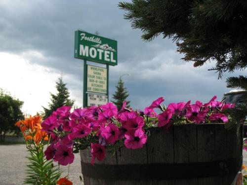 Foothills Motel Photo