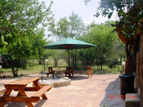The Royal Gecko Bushveld Lodge Photo