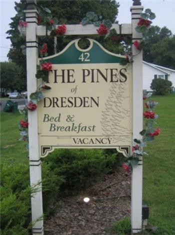 The Pines Of Dresden
