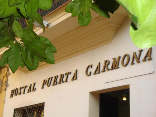 Hostal Puerta Carmona photo 76