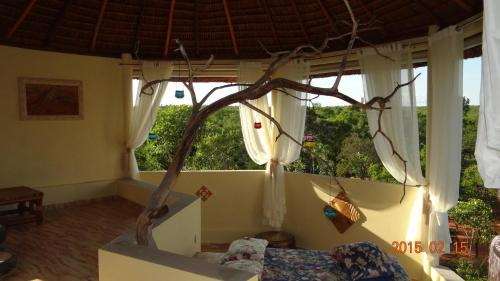 Jalapão Ecolodge Photo
