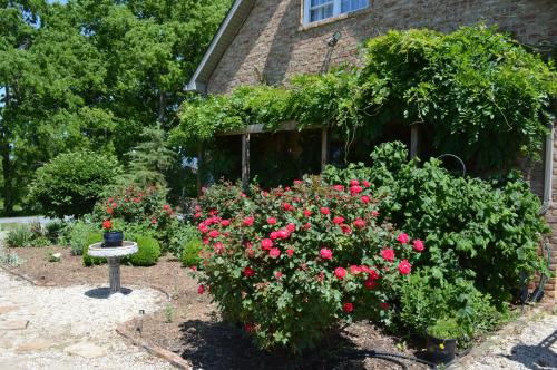 Rose Cottage Bed & Breakfast Photo