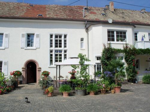 Weingut, Gstehaus und Kruterhof