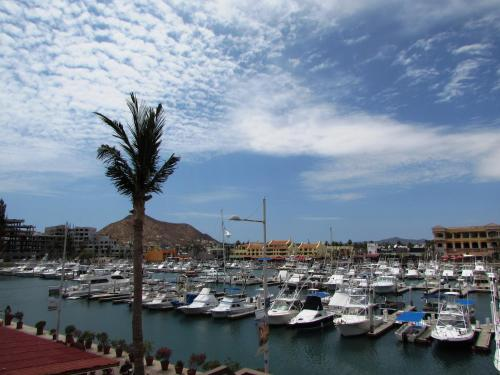 Marina Town and Beach Studios in Cabo Plaza Photo