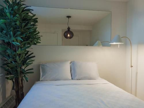 Two-Bedroom Self-Catering Apartment: Lower East Side Photo