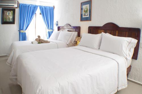 Eco-hotel El Rey del Caribe Photo