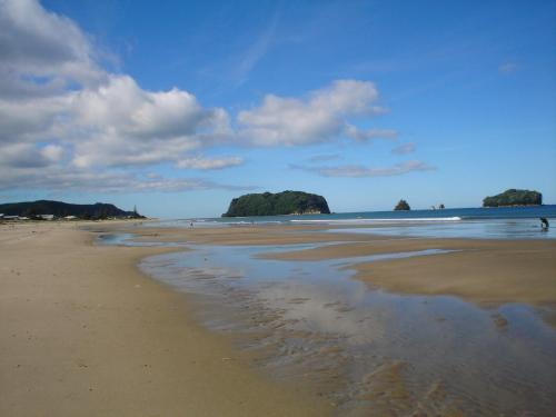 creative writing whangamata beach essay