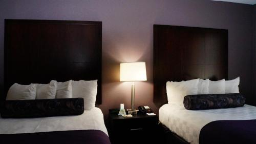 Best Western PLUS Dallas Hotel & Conference Center photo 18