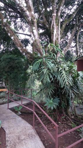 HOTEL VILLA TINA ECO-LODGE Photo
