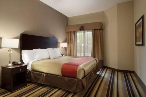 Homewood Suites by Hilton Rochester/Greece, NY Photo