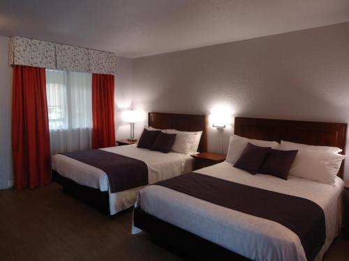 Hotel L'Oiseliere Montmagny Photo