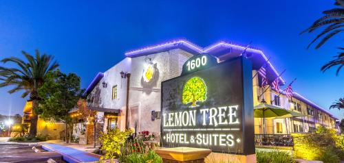 The Lemon Tree Hotel Photo