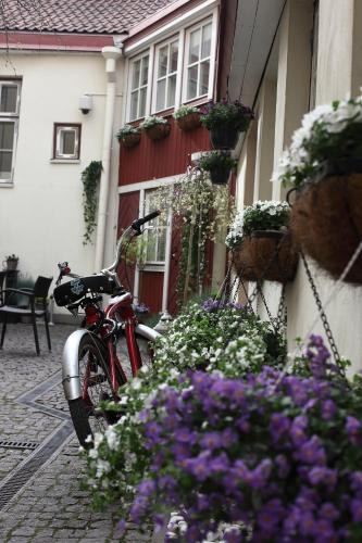 Three Sisters Boutique Hotel, Tallinn, Estland, picture 31