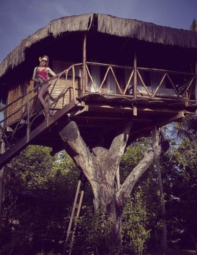 Art Jungle Eco Lodge Photo
