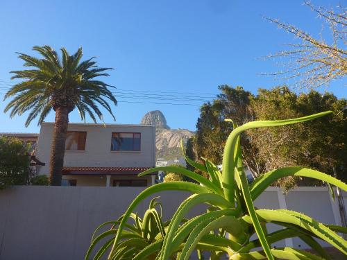 Bantry Bay Guesthouse Photo