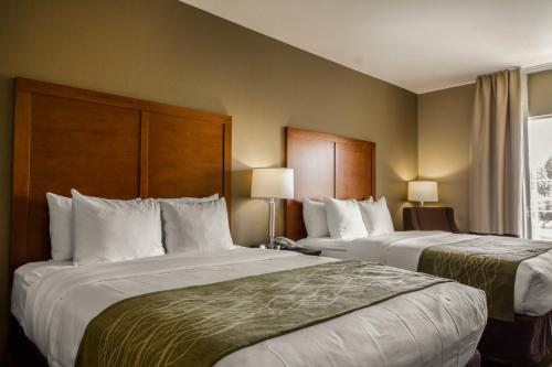 Comfort Inn & Suites Sacramento – University Area Photo