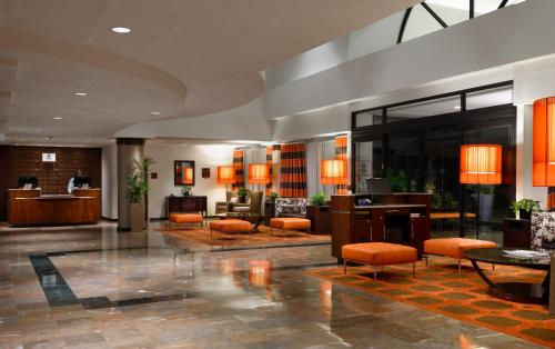 Sheraton Suites Orlando Airport Hotel photo 30