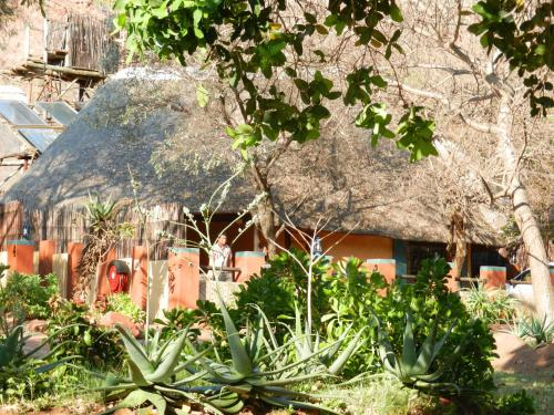 Mashovhela Bush Lodge Photo