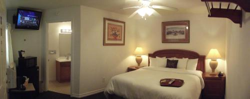 Hempstead Country Inn & Suites Photo