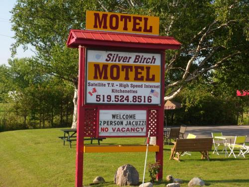 The Silver Birch Motel Photo