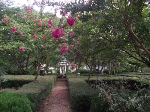 Edgewood Plantation Photo