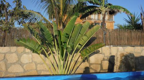 Casa Panorama Bungalows Photo