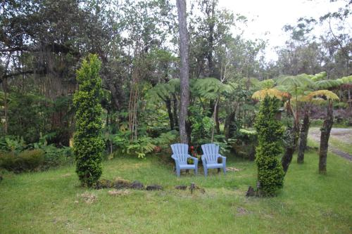Volcano Fern Forest Retreat Photo