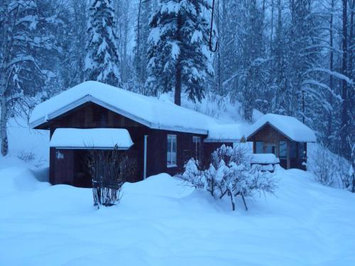 Lorien Guest Cottage Photo