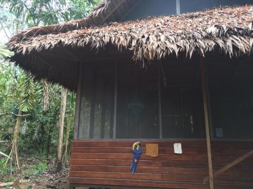 Anaconda Lodge Photo