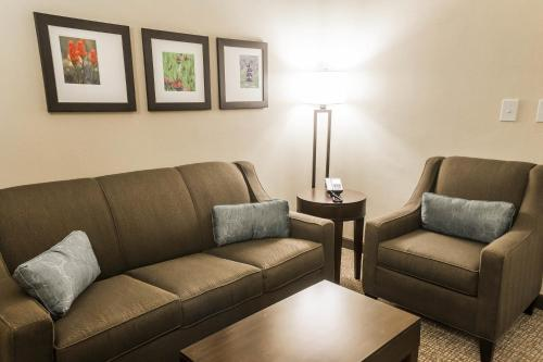 Comfort Inn & Suites Pharr/McAllen Photo