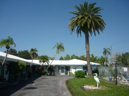 Palm Court Motel Photo