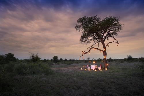 Tanda Tula Safari Camp Photo