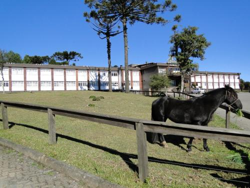 Hotel Fazenda Pampas Photo